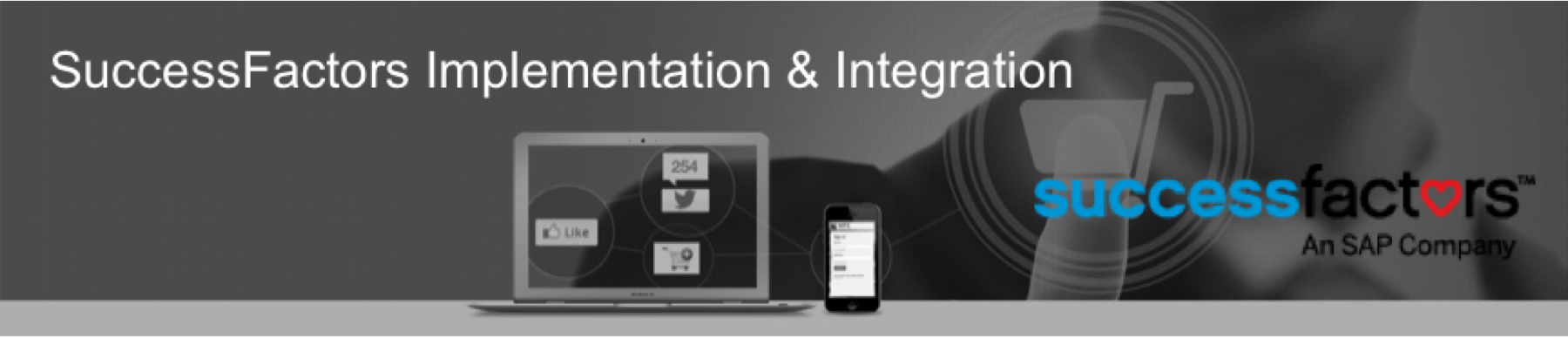 SuccessFactor System Integrator